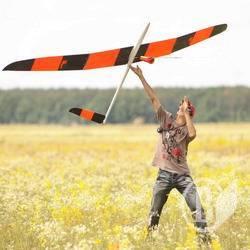 фото свободнолетающие авиамодели